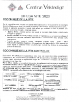 Avviso Cocciniglia Anno 2020